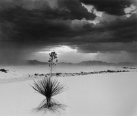 White Sands, NM (4)